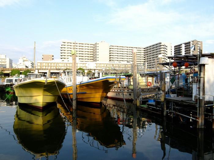 Velviaの発色が最高!ブログ、SNSにおすすめのカメラ。『FUJIFILM XF1』作例・サンプル写真