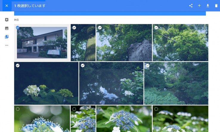 20150529_google_photo_33