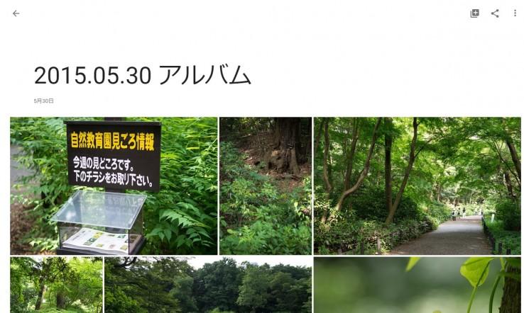 20150529_google_photo_34