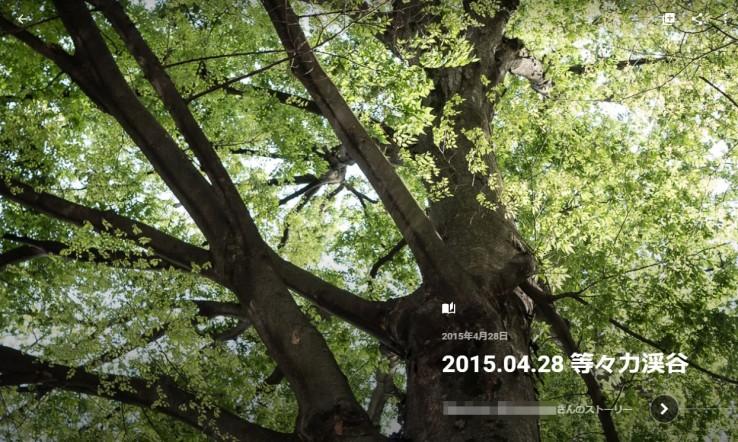 20150529_google_photo_38