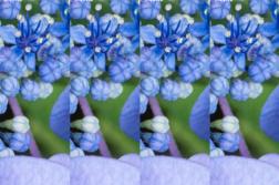 「Google フォト」高画質設定JPEG画質チェック!ついでにJPEGmini、PhotoshopCCとも比較してみる。 | かめらとブログ。