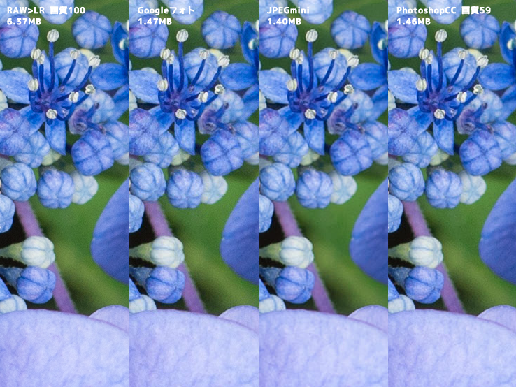 「Google フォト」高画質設定JPEG画質チェック!ついでにJPEGmini、PhotoshopCCとも比較してみる。