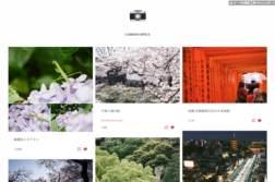 写真ブログを作るなら「Tumblr」がおすすめ!フォトギャラリーサイトのかんたんな作り方とおしゃれなテーマまとめ | かめらとブログ