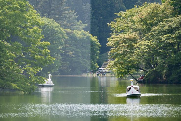 鎌北湖/埼玉日帰り旅行