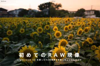 初めてのRAW現像!Lightroom CC を使ったRAW現像の手順とちょっとしたコツをまとめてみる
