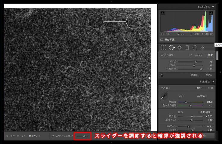 9867_remove_dust_lightroom_08