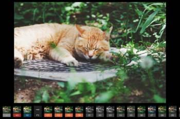 写真をフィルム風に加工するフィルターアプリ「VSCO」をおすすめしてみる。