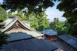 新緑眩しい5月の「高尾山」で撮ってきました。 - 写真スポットで撮ってきました。 | かめらとブログ